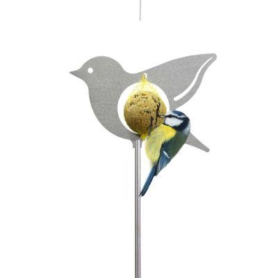 Meisenpicker Vogel, stehend