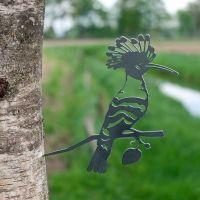 Baumstecker Wiedehopf